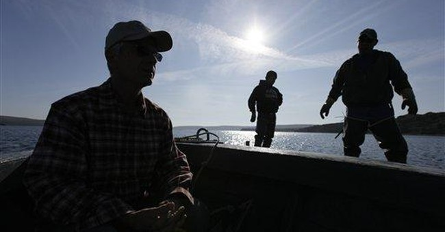 NorCal oyster farm dispute spreads to Capitol Hill