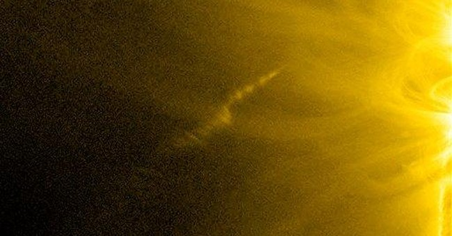 Comet defies death, brushes up to sun and lives