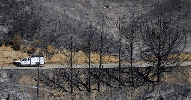 Confusion cited in Calif. wildfire report