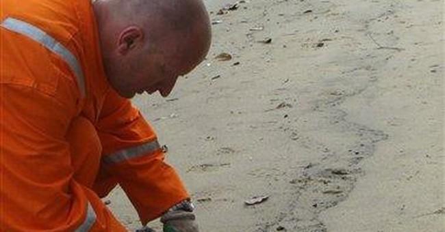 Brazil oil spill may affect sensitive area