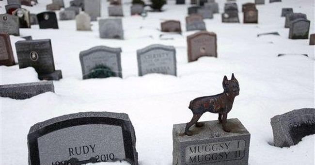 NY OK's burying human ashes in pet cemeteries