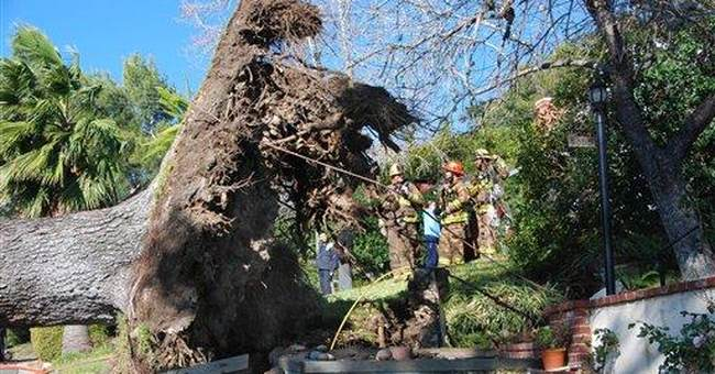 Calif. winds dying but gusts still possible