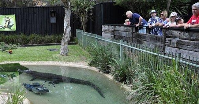 Cranky croc steals Aussie zoo worker's lawn mower