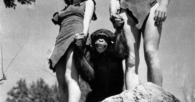 Did Cheetah from 1930s Tarzan flicks die?