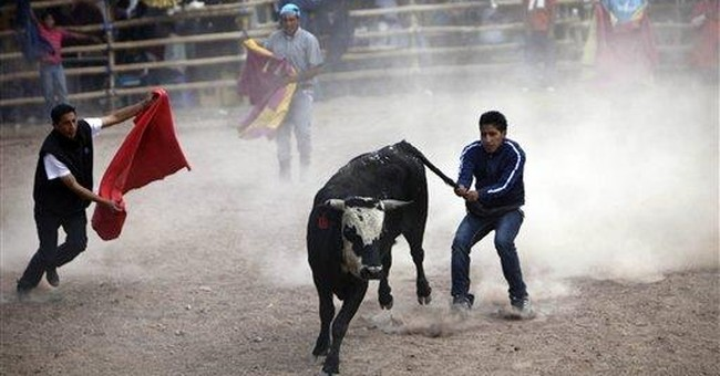 Ecuador's blood sports face possible ban
