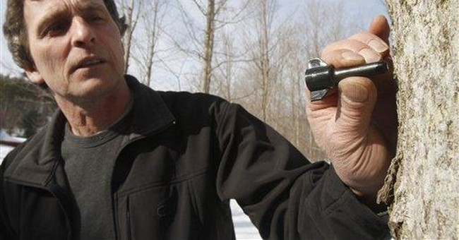Vt. maple syrup makers try gadget to extend season