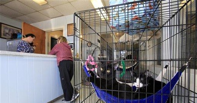 Pet pipeline gives hope, worry to crowded shelters