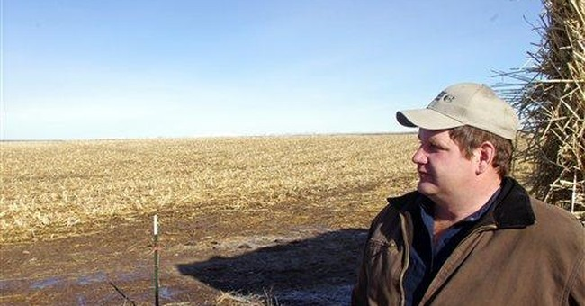 Idaho bill would protect farms from nuisance suits