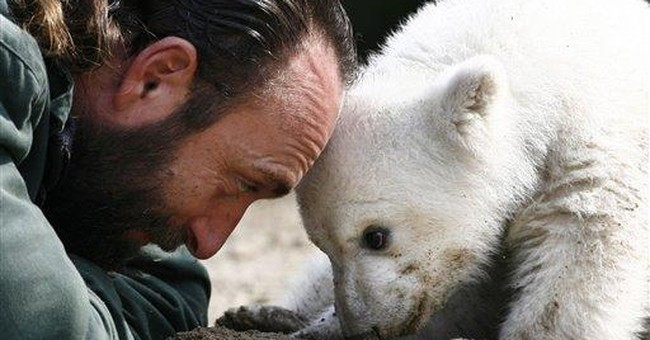 Fans mourn Knut's death at Berlin zoo