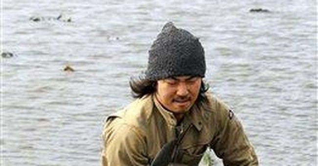 Porpoise left by tsunami in rice paddy back to sea