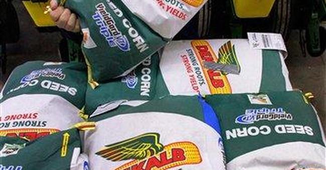 Monsanto posts 2Q profit but forecast disappoints