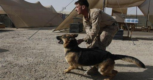 As U.S. Forces Leave Afghanistan, Special Forces Operators Reflect on Their K9 Partners