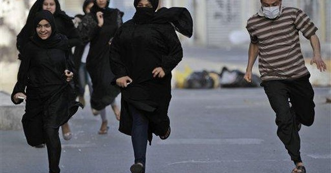 Denmark PM to Bahrain: release jailed activist
