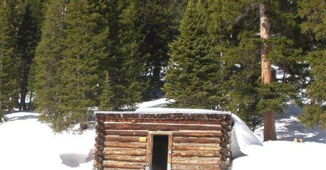 Forest Service in quandary about Colo. frozen cows