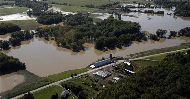 Vermont dairies scramble to find feed after Irene