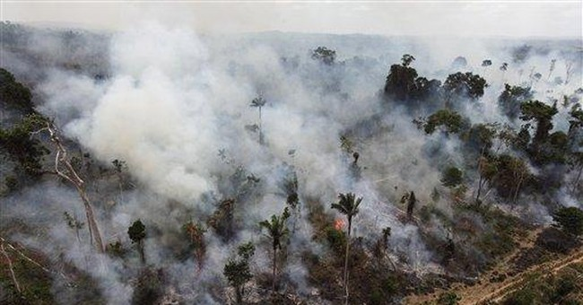 Brazil congress set to vote on divisive forest law