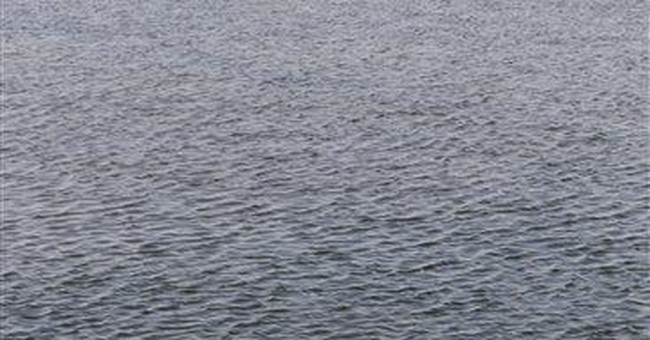 Dolphin spends third day in California wetlands