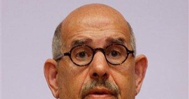 ElBaradei returns to Egypt politics with new party