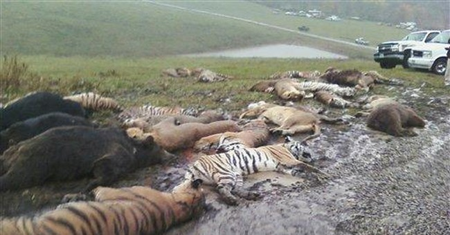 Widow to retrieve 5 exotic animals from Ohio zoo