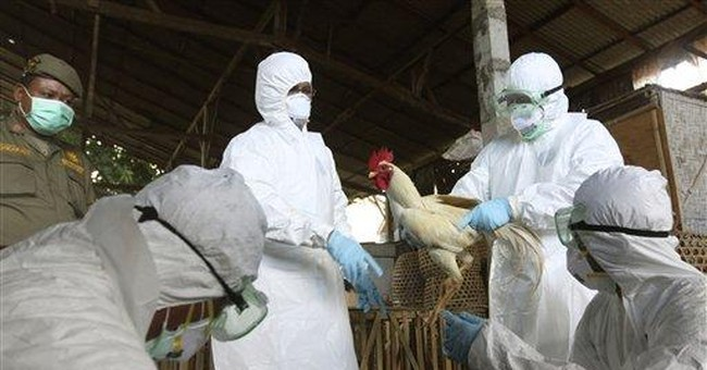 First of 2 papers on lab-made bird flu published