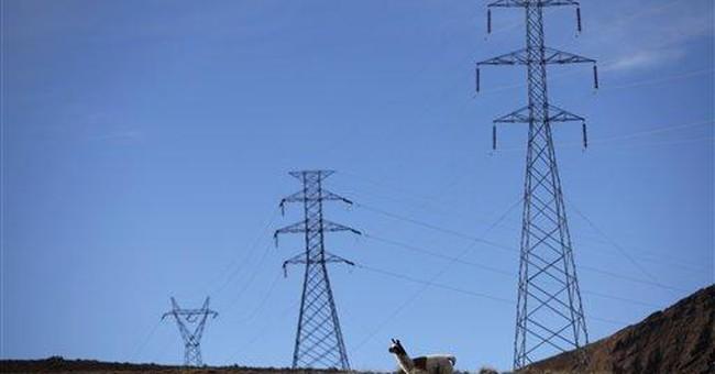 Spain slams Bolivia power grid nationalization
