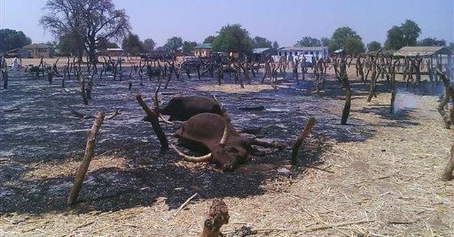 Gunmen kill 34 at northeast Nigeria cattle market