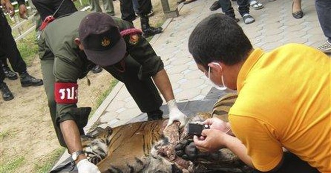 Thai police seize tiger parts said to be for China