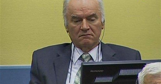 Judge delays Mladic trial due to evidence errors