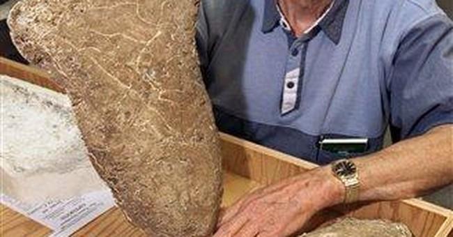 Wanted: Bigfoot hair samples for European study