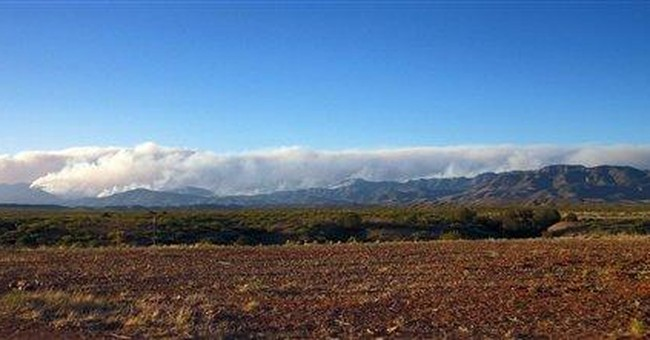 Forest wildfire becomes largest in NM history