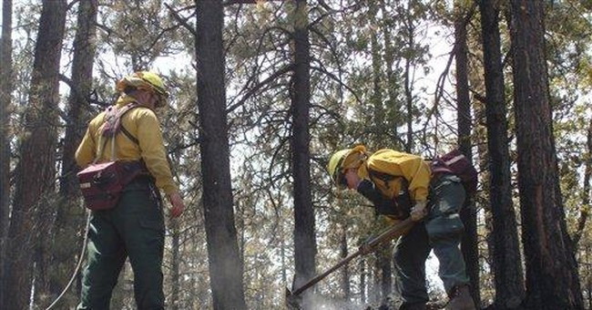 Record-setting NM fire grows to 339 square miles