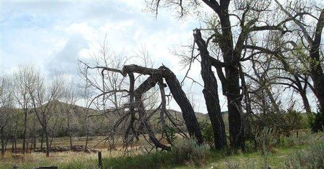 Planned mine threatens quiet of ND Roosevelt ranch