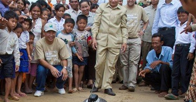 Endangered turtle to be tracked in Cambodia