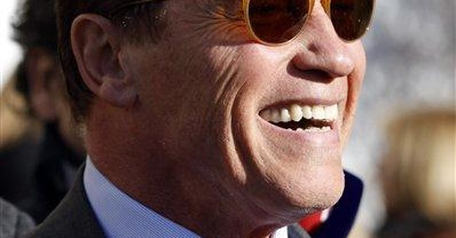 Arnie visits Austrian town run on green energy