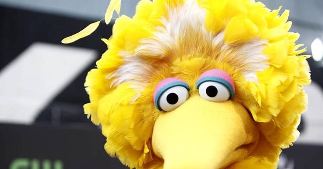 Debate thrusts Big Bird into presidential campaign