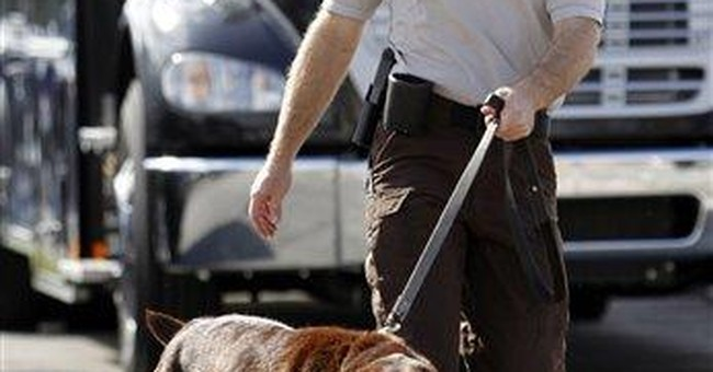 Decided by a nose? Court ponders drug dog's sniff