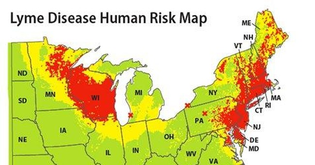 New map pinpoints Lyme disease risk areas