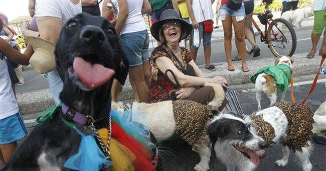 Carnival goes to the dogs with Rio pet parade