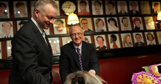 NYC says no more restaurant meals for winning dog
