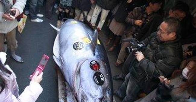 Swank sushi: Tuna fetches record $736K in Tokyo