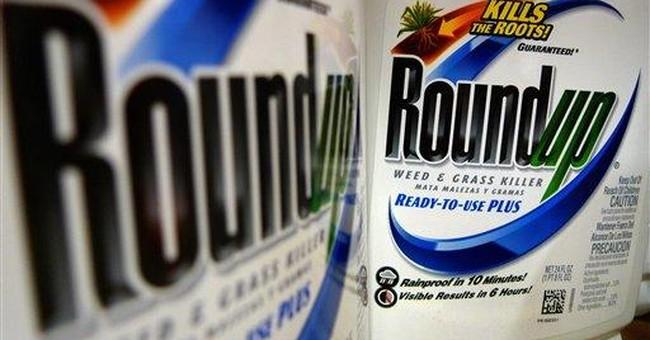 Monsanto 1Q profit surges on seed sales