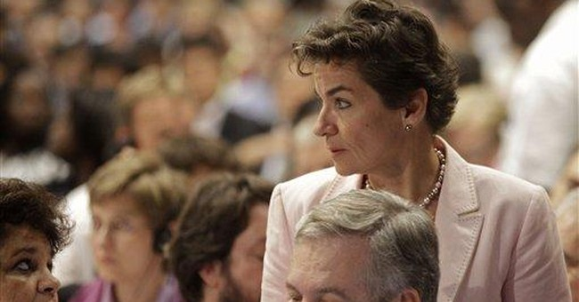 UN climate chief turns to CEOs for action