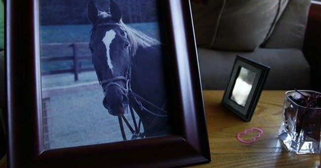 How a girl lost  _ and found _ the horse she loved