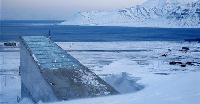 Syria crops sheltered in Arctic doomsday vault