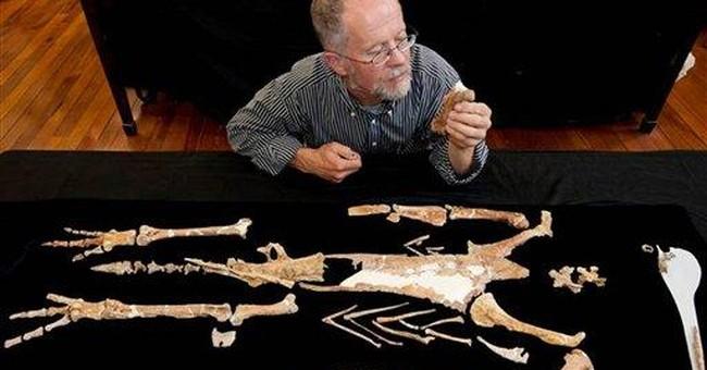 Scientists reconstruct long-extinct giant penguin