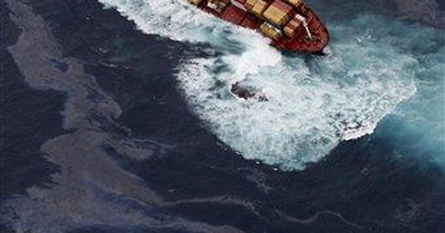 Probe: Ship took short cuts before NZ grounding