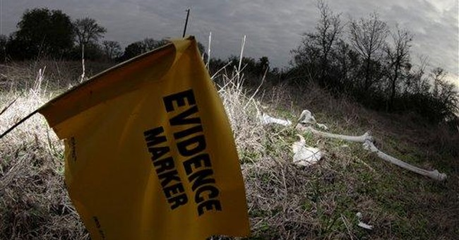 Texas vulture study upends forensics