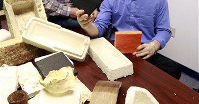 NY company growing mushrooms as packing material