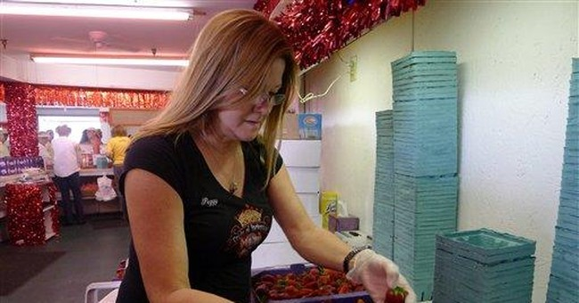 Huge strawberry harvest means low prices, profits