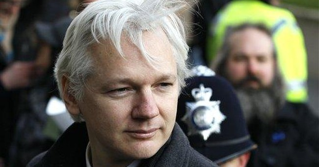 WikiLeaks' Assange plans bid for Australian Senate